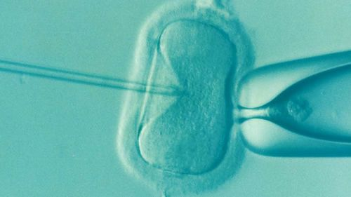In Vitro Fertilization – What Many Christians Fail To Consider - Part 1